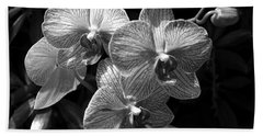Orchids In Black And White Beach Towel