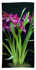 Orchids Miltonia Beach Towel by Lana Enderle