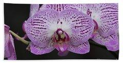 Orchids On Black Beach Sheet