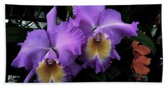 Orchids Purple Passion Beach Towel