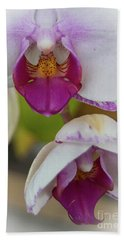 Beach Towel featuring the photograph Orchids Up Close by Judy Hall-Folde