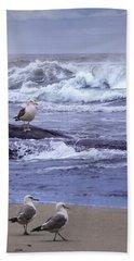 Oregon Coastal Morning Beach Towel