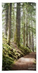 Beach Sheet featuring the photograph Oregon Woodland Forest Trail Landscape by Andrea Hazel Ihlefeld