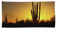 Organ Pipe Cactus Beach Sheet