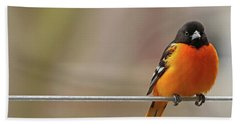 Oriole On The Line Beach Towel