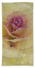 Ornamental Cabbage 365-301 Beach Sheet by Inge Riis McDonald