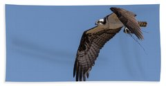 Beach Towel featuring the photograph Osprey 2017-1 by Thomas Young