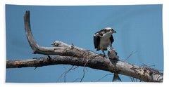 Osprey And Fish Beach Towel