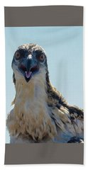 Osprey Chick Smiles For The Camera Ultra Macro Beach Sheet by Jeff at JSJ Photography