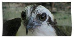 Osprey Portrait Beach Towel