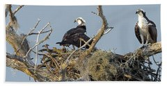 Beach Towel featuring the photograph Osprey Family by Norman Peay