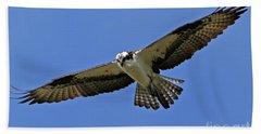 Osprey Glide Beach Sheet