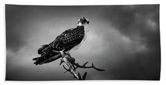 Osprey In Black And White Beach Sheet by Chrystal Mimbs