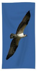Beach Towel featuring the photograph Osprey In Blue Sky by William Selander