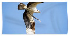 Beach Sheet featuring the photograph Osprey In Flight by Ricky L Jones