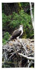 Osprey In Nest Beach Towel