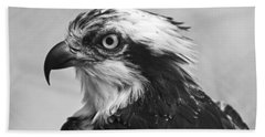 Osprey Monochrome Portrait Beach Sheet by Chris Flees