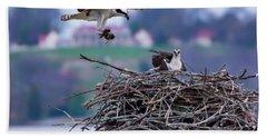 Osprey Nest Building Beach Sheet