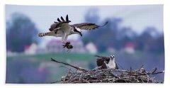 Osprey Nest Building Beach Towel