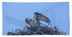 Osprey Nest II Beach Sheet by Billie-Jo Miller
