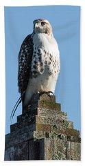 Red Shoulder Hawk On A Post Beach Sheet by Paul Freidlund