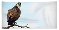Beach Towel featuring the photograph Osprey Out On A Limb by AJ Schibig