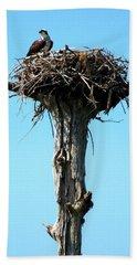 Osprey Point Beach Sheet by Karen Wiles