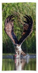Osprey - Strike Beach Towel