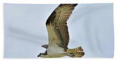 Osprey Upswing Beach Towel