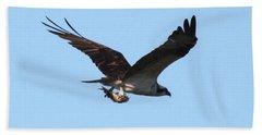 Osprey With Fish Beach Sheet by Carol Groenen