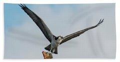 Osprey With Rainbow Bass 1 Beach Sheet