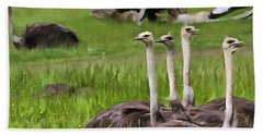 Ostriches In Africa Beach Towel by Dan Sproul