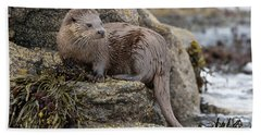 Otter Beside Loch Beach Towel