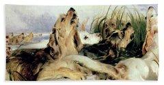Otter Hounds Beach Towel