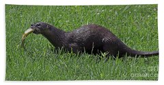 Otter With Fish Beach Sheet