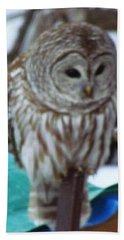 Our Own Owl Beach Towel