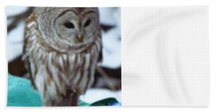 Beach Towel featuring the photograph Our Own Owl by Betty Pieper