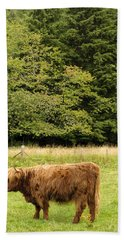 Beach Towel featuring the photograph Out To Pasture by Christi Kraft