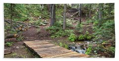 Beach Sheet featuring the photograph Over The Bridge And Through The Woods by James BO Insogna