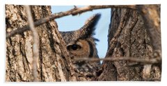 Owl Peek Beach Towel