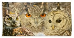 Owl You Need Is Love Beach Sheet by Heather King