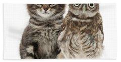Owling And Yowling Beach Sheet