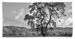 Pacheco Pass Beach Towel by Sonny Marcyan
