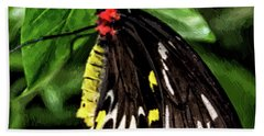 Painted Butterfly Beach Towel