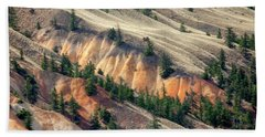 Beach Towel featuring the photograph Painted Hills by Jacqui Boonstra