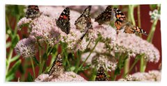 Painted Ladies Gathering Beach Towel