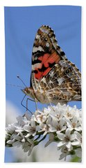 Painted Lady Against The Sky Beach Towel