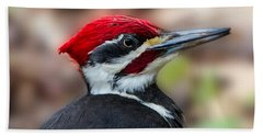 Beach Sheet featuring the painting Painted Pileated Woodpecker by John Haldane