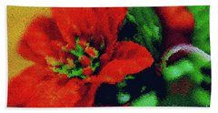 Painted Poinsettia Beach Towel by Sandy Moulder