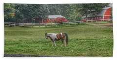 1005 - Painted Pony In Pasture Beach Towel